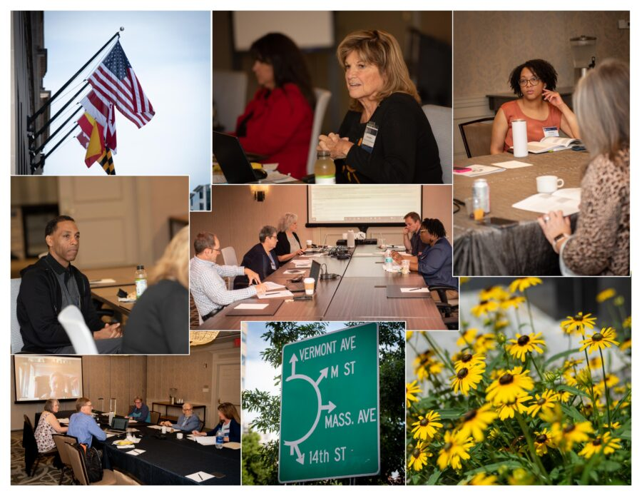 Collage of photographs of commitees meeting at conference tables